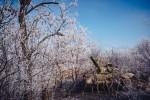 Фоторепортаж: Логвиново Дебальцево (ДНР), февраль 2015 г. (фото)
